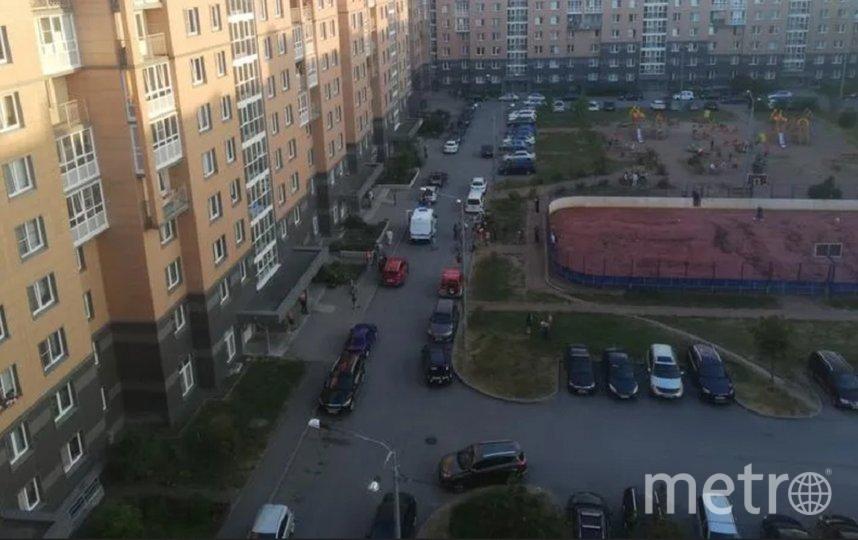 Инцидент произошел в Пушкинском районе. Фото  vk.com/Славянка   Подслушано.