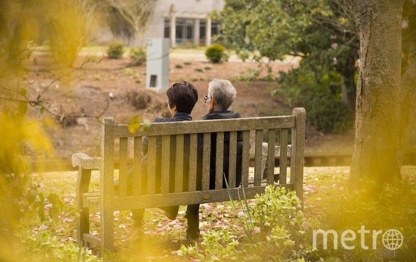 Большинство опрошенных не торопятся выходить на пенсию. Фото pixabay