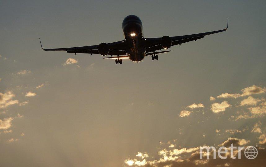 Отправиться в Египет пока можно только регулярными рейсами. Фото pixabay