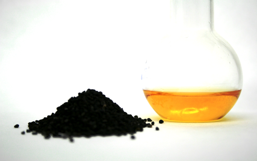 Чернушка посевная. Фото pixabay