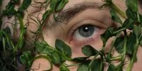 Природа прилипла к человеку: как растения крепятся к коже