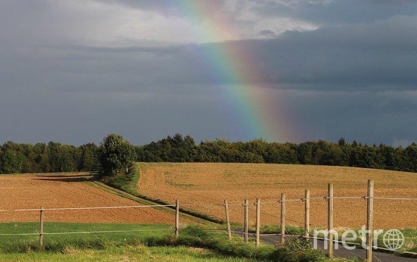 Изменение климата приведет к засухам и,наоборот, обильным осадкам. Фото Pixabay