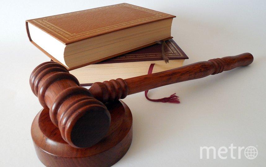 Соответствующее решение вынесли в городском суде. Фото pixabay