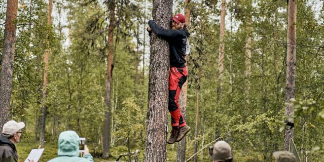 Свои фото можно опубликовать в Instagram с хештегом #TreeHugging2021.