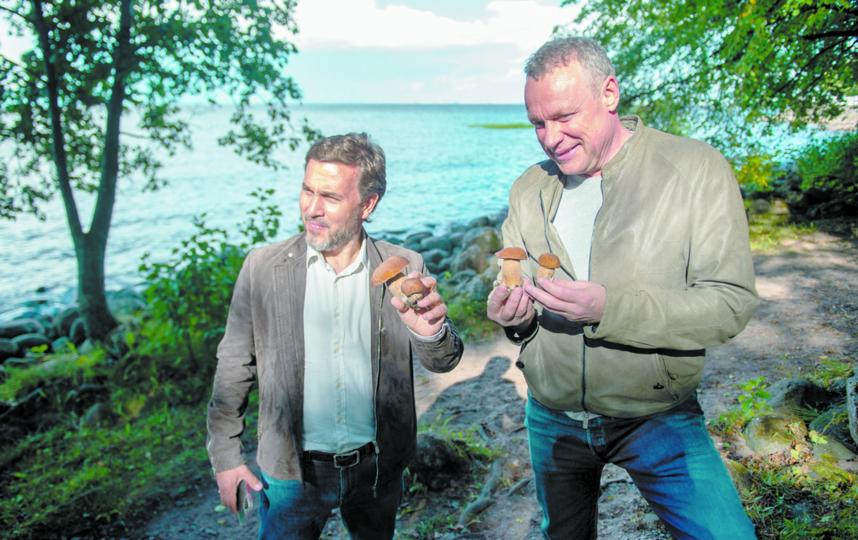 """Около Финского залива Павлов и Жигунов нашли белые грибы. Фото Святослав Акимов, """"Metro"""""""