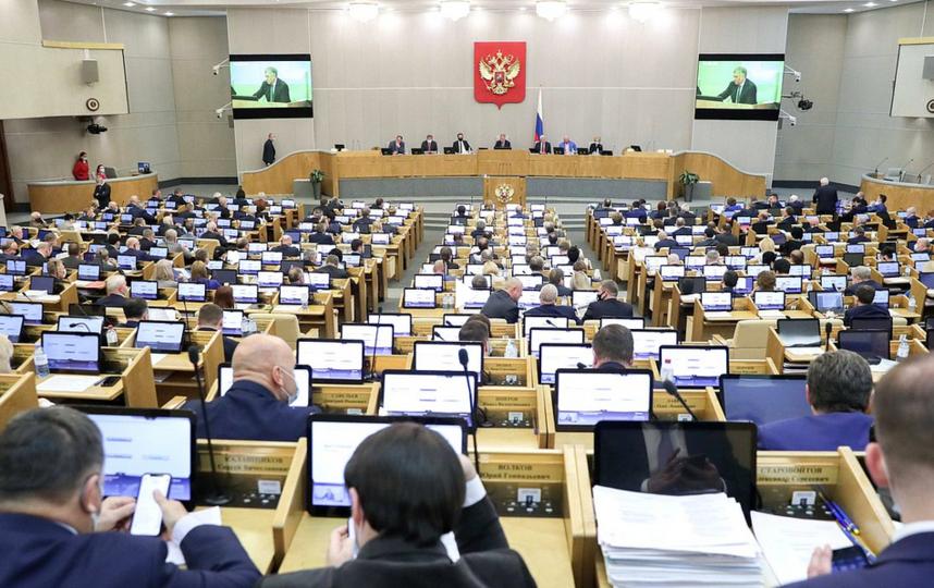 Русофобы не смогут въехать на территорию России. Фото http://duma.gov.ru/