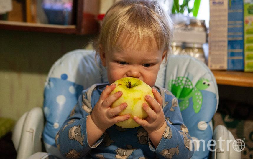 """Маленькие сластены оценят такой полезный десерт, как яблочный мармелад. Фото Святослав Акимов, """"Metro"""""""