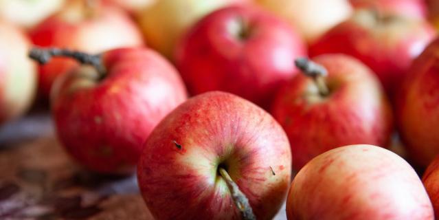 """Помимо шарлотки и штруделя яблочный урожай можно """"пустить"""" на салаты, горячие блюда и хреновину."""