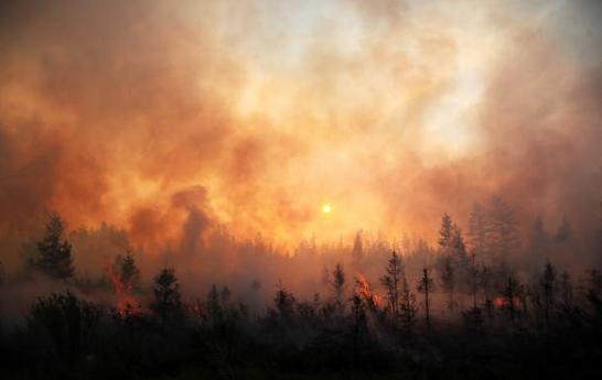 Пожары в Якутии взяли под контроль. Фото Getty