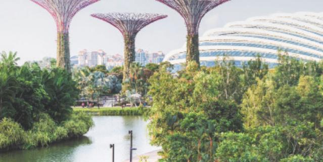 Gardens by the Bay – cимвол Сингапура.