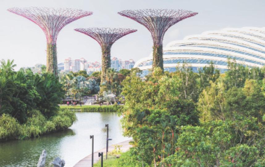 Gardens by the Bay – cимвол Сингапура. Фото Istock
