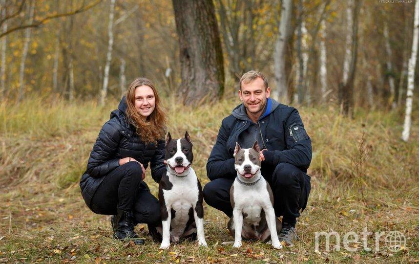 Светлана Колесниченко, её муж Андрей Арбузов и их хвостатые любимцы. Фото Мария Семёнова