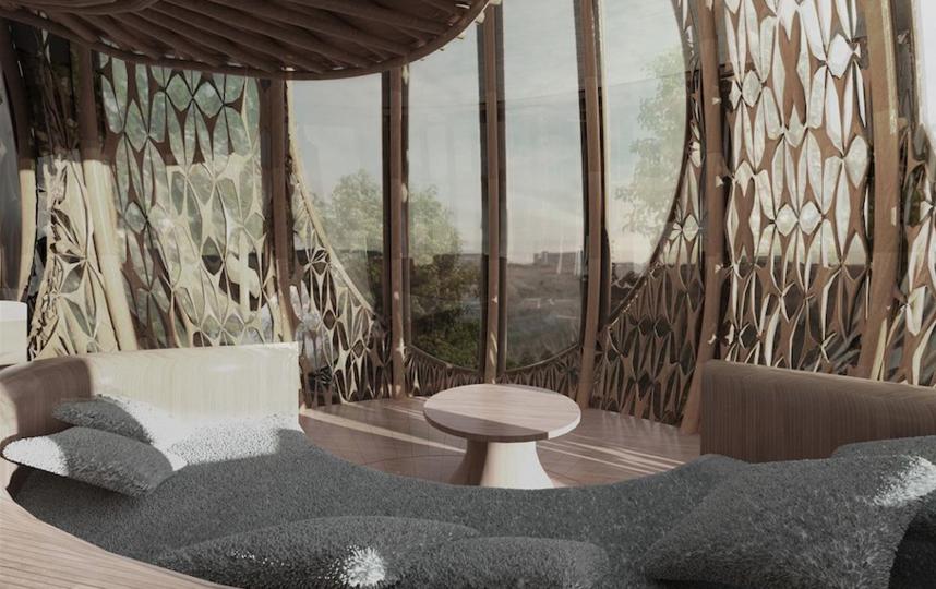 Так бамбуковая капсула выглядит внутри. Фото Скриншот Instagram @ded_design_studio