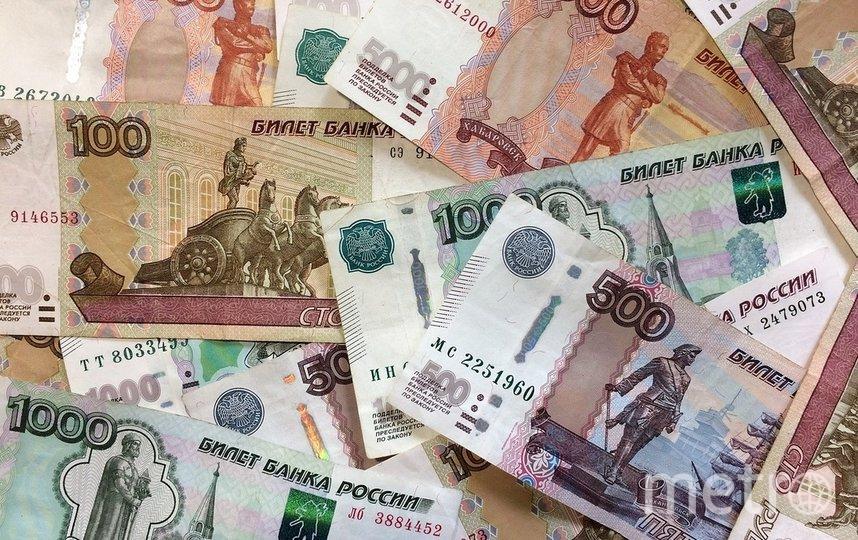Депутат Госдумы предложил увеличить размер прожиточного минимума. Фото pixabay.