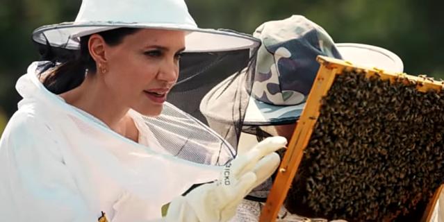 Джоли защищает пчел.