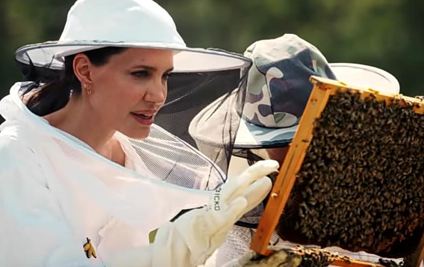 Джоли защищает пчел. Фото YOUTUBE-КАНАЛ @VOGUE
