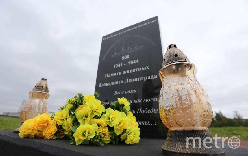Памятник установят в мае 2022 года. Фото Пресс-служба Администрации Петербурга.