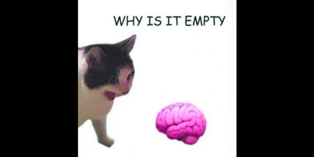 Новый вариант фотожабы с шуткой про мозг.