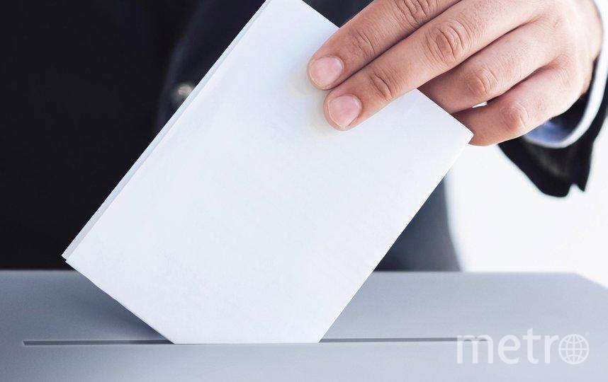 48% петербуржцев планируют участвовать в выборах. Фото duma.gov.ru.