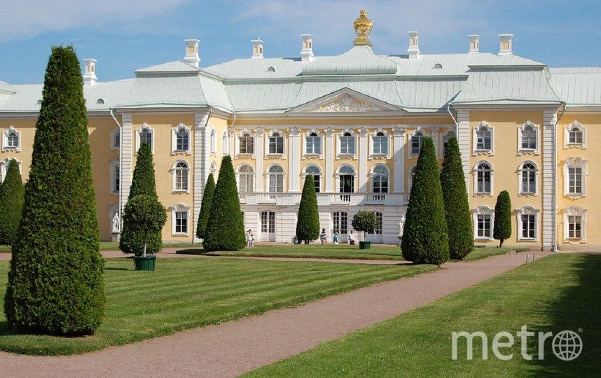 ГУ МЧС предупреждало, что 14 сентября в Петербурге ветер усилится. Фото pixabay.