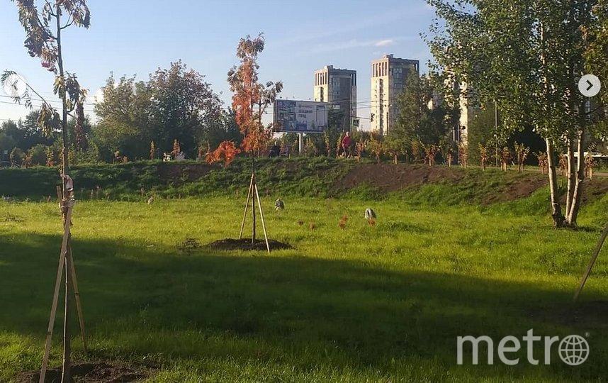 Сквер находится науглу Новосмоленской набережной иулицы Кораблестроителей. Фото instagram.com/irina.egorova3011.
