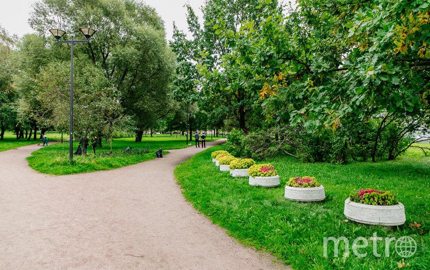 Петербургский сад. Фото gov.spb.ru.