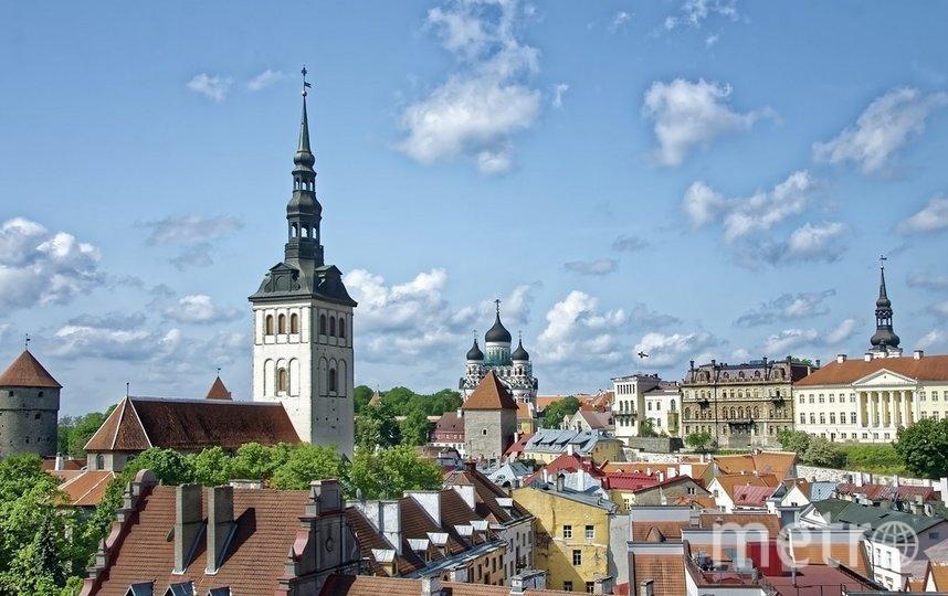 Эстония признает те вакцины, которые признаны исходной страной. Фото pixabay.