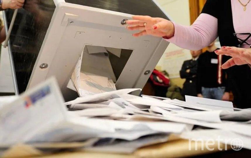Явка на выборы в Госдуму в Петербурге составила 37,35%