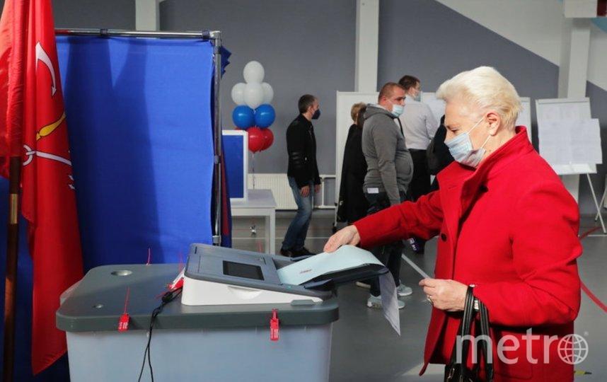 Голосование проходило в этом году с 17 по 19 сентября. Фото https://www.gov.spb.ru.