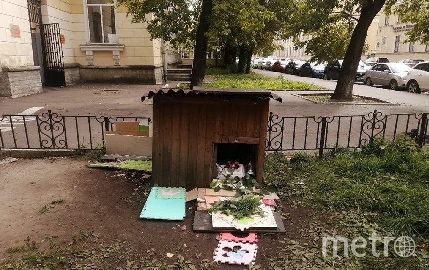 Будка, в которой жил пес Миша. Фото vk.com/kostrovyaroslav.