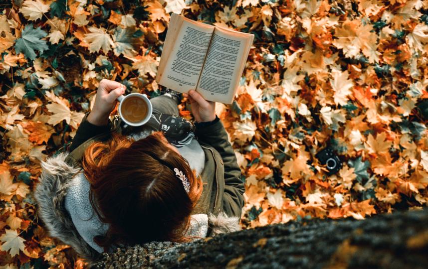 Лучшие снимки осенью. Фото pixabay