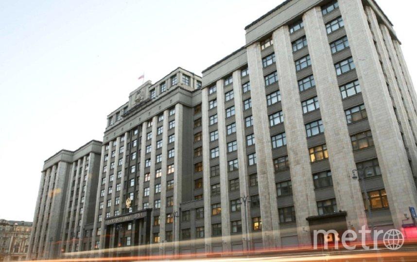 В Думу также внесли документ, обязывающий всех губернаторов именоваться «глава субъекта РФ». Фото duma.gov.ru.