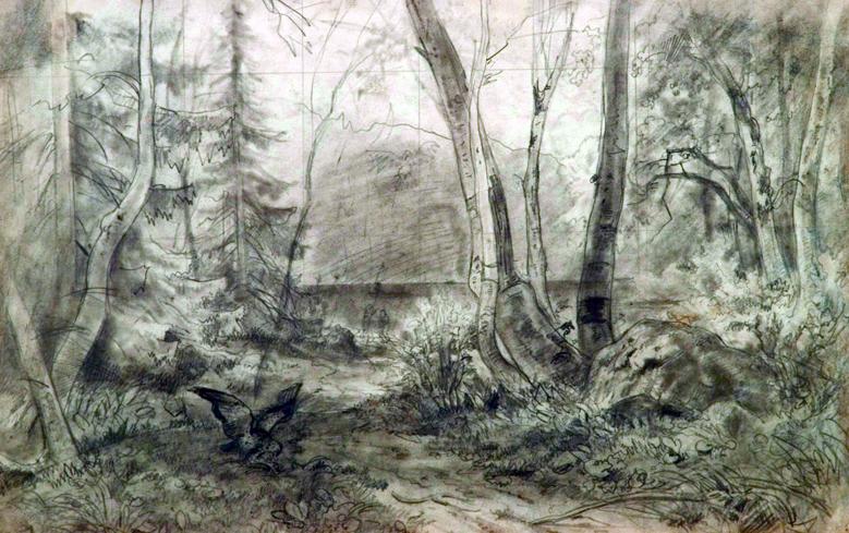 """Ранний карандашный рисунок И. Шишкина """"На Валааме"""" стоит 3 млн 200 тыс.руб. Фото Альбион галерея"""