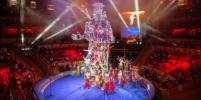 Трус, Балбес и Бывалый стали жонглёрами: в Петербурге представили цирковое шоу
