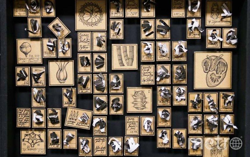 Выставочное пространство ArtBox расположилось на Каменноостровском проспекте 11. Фото Предоставлено организаторами