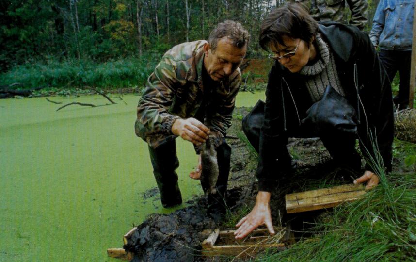 Выхухоль выпускают в искусственную нору в восстановленном месте обитания. Фото Фото предоставлены героем публикации.