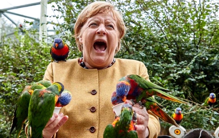 Ангела Меркель. Фото AFP
