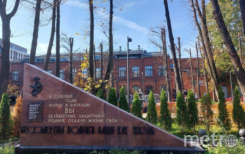 Предоставлено пресс-службой администрации Василеостровского района.