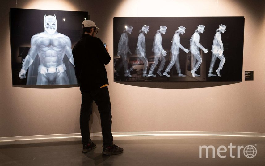 """Выставка в """"Эрарте"""" продлится до 6 февраля 2022 года. Фото Святослав Акимов, """"Metro"""""""