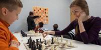 Как Бет Хармон и Гарри Каспаров: петербуржцев захватила жажда шахмат
