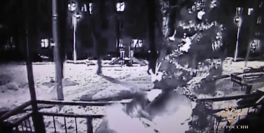 Скриншот видео МВД России.