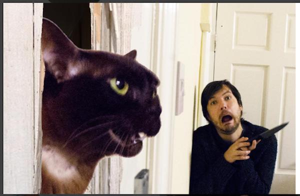 Все - скриншоты Instagram moviecats.