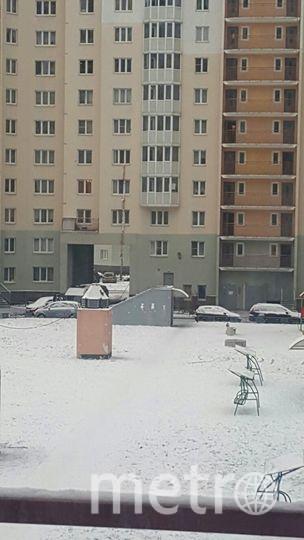 Группа ДТП и ЧП Петербурга во VK/spb_today.