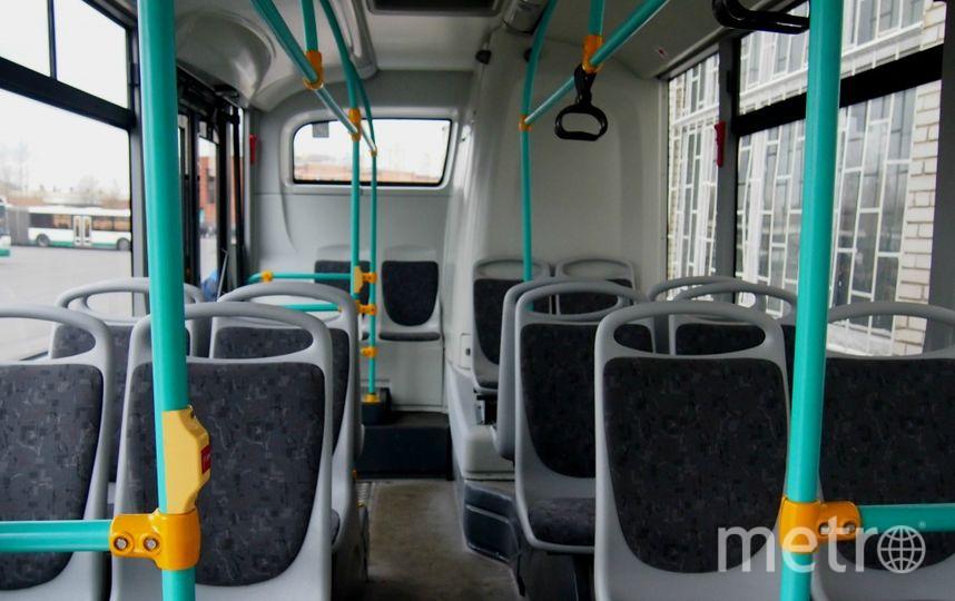 avtobus.spb.ru.