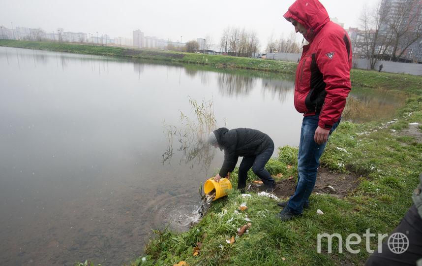 Рыбалка на озере долгое спб