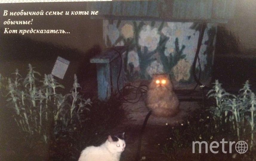 Ксения.