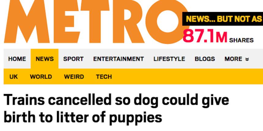 Скриншот metro.co.uk.