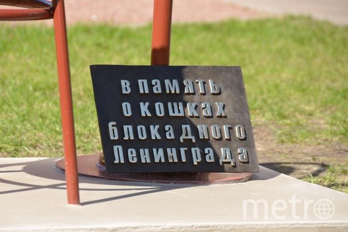 администрация Выборгского района Петербурга.