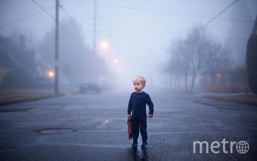 скачать туман через торрент - фото 8