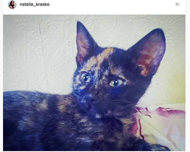 instagram.com/natalia_krasko.